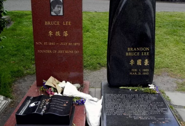 Deeper Look Into The Death of Bruce Lee and Brandon Lee