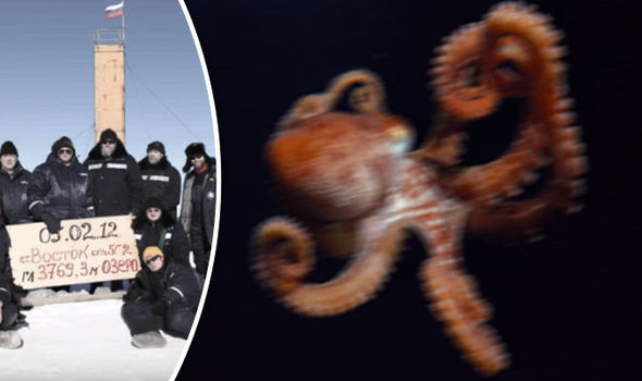 Is 14 Legged Killer Squid Found TWO MILES Beneath Antarctica Being Weaponised By Putin?