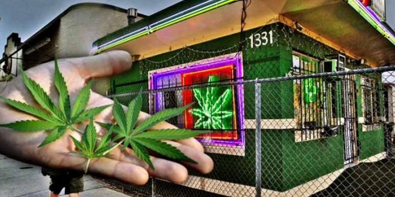 Landmark Study Shows Legal Marijuana Sales Reduce Crime