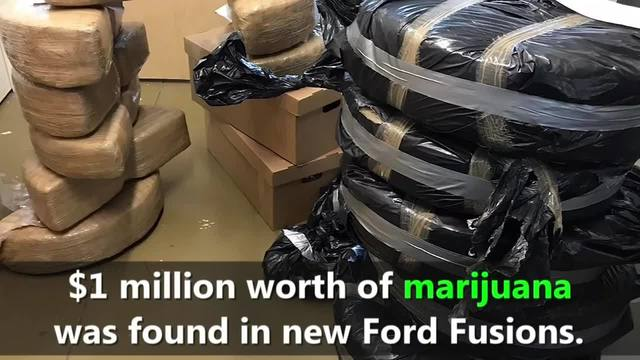 $1 Million Worth of Marijuana Smuggled Into US In New Ford Cars Built In Mexico