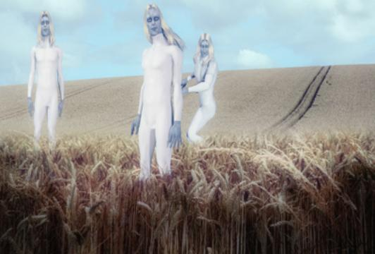 Aliens Caught on Tape – British Cop Witnesses Tall White Aliens Inspecting Fresh Crop Circle