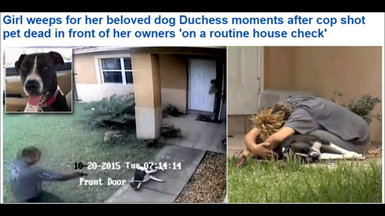 Cop Knocks on Innocent Family's Door, Kills Their Dog, and Then Walks Off